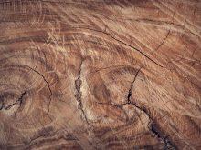 Despre utilajele de prelucrare a lemnului